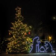 Weihnachtsbaum-Ederen-2018